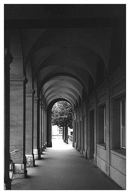 Stiller Weg in die Einsamkeit