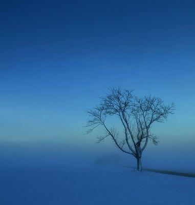 Stiller Winterabend