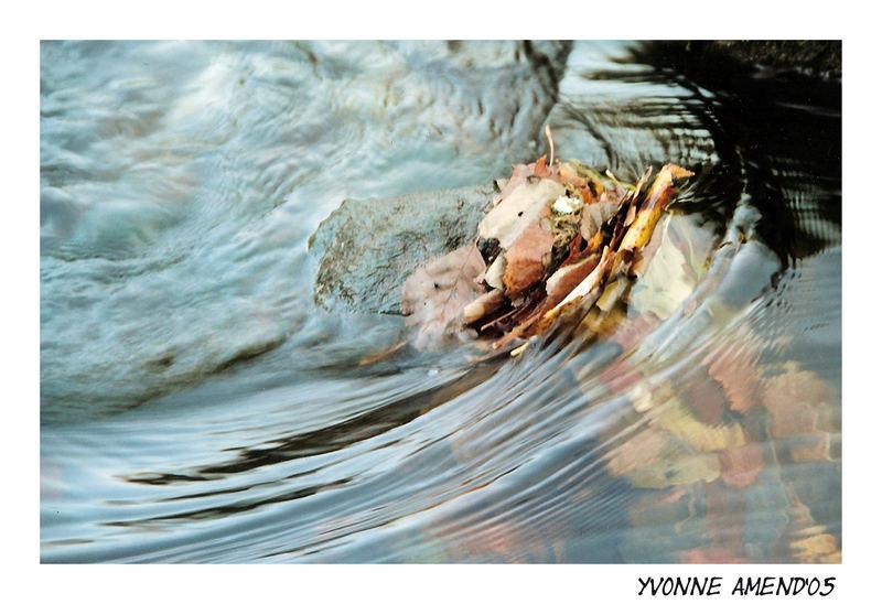 Stilles Wasser.....