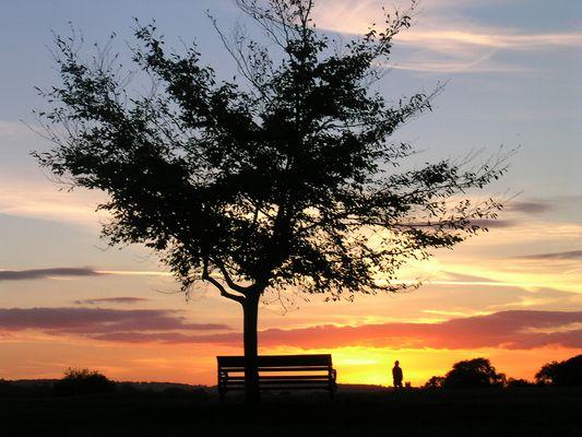 Stillleben beim Sonnenuntergang