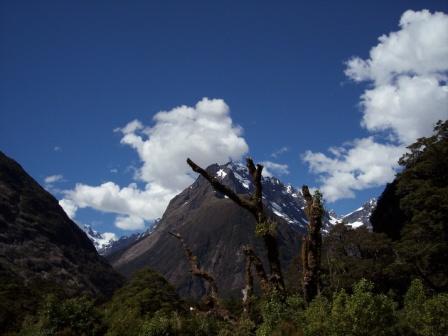 Stillleben in den Bergen von Neuseeland