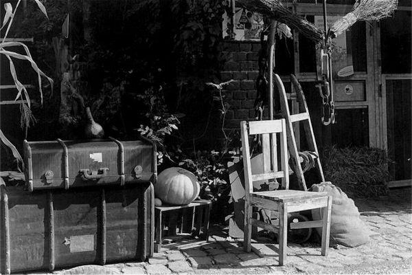 Stillleben mit Koffer, Stuhl, Kürbis und Katze (nicht im Bild)
