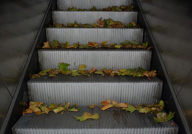 Stillstand im Herbst