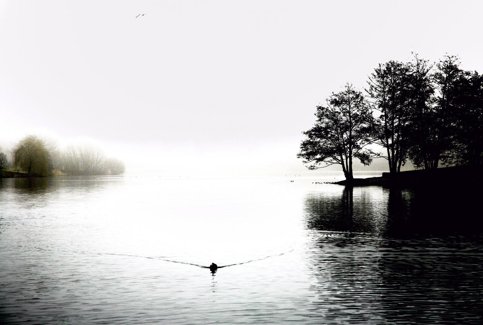 Stimmung am See