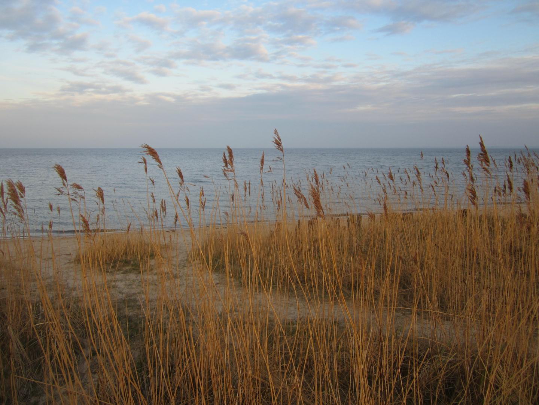 Stimmung am Wattenmeer - Sylt