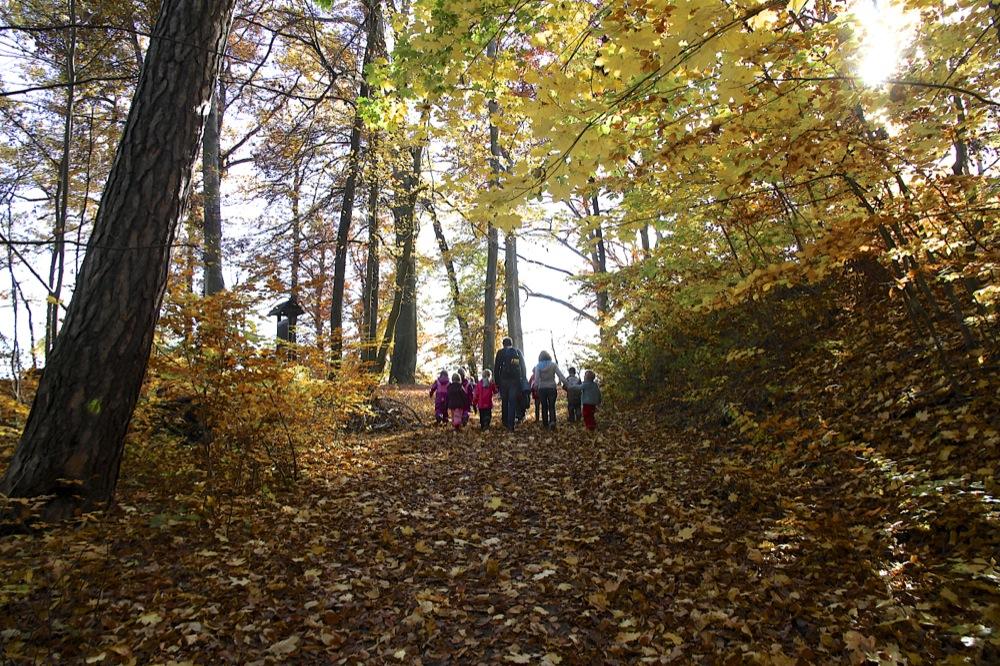 Stimmungsvolle Herbstwanderung . . .