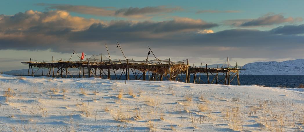 Stockfisch-Anlage, bei Vardø, Nord-Norwegen, Februar 2013