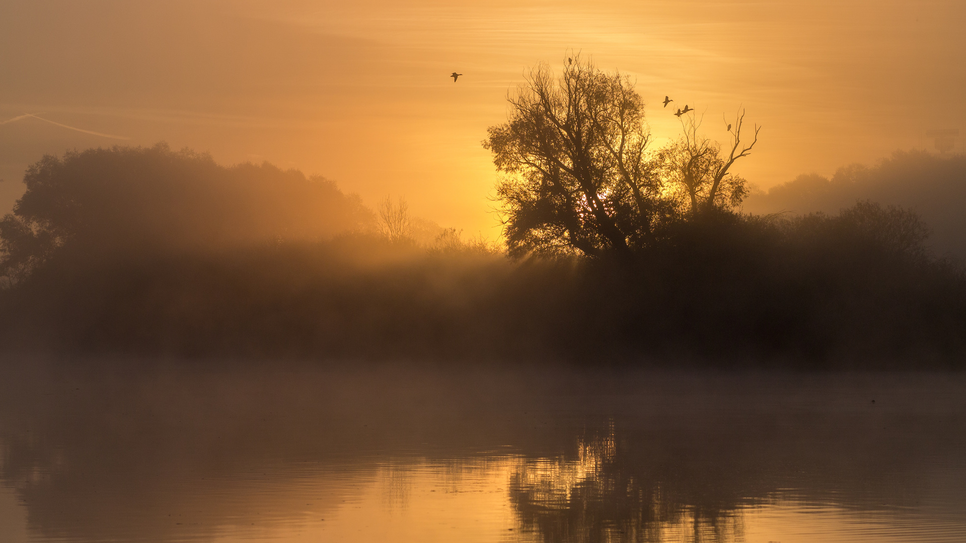 Stoibermühle am Morgen