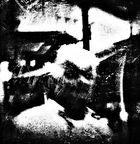 Stolen Faces ( 22 )