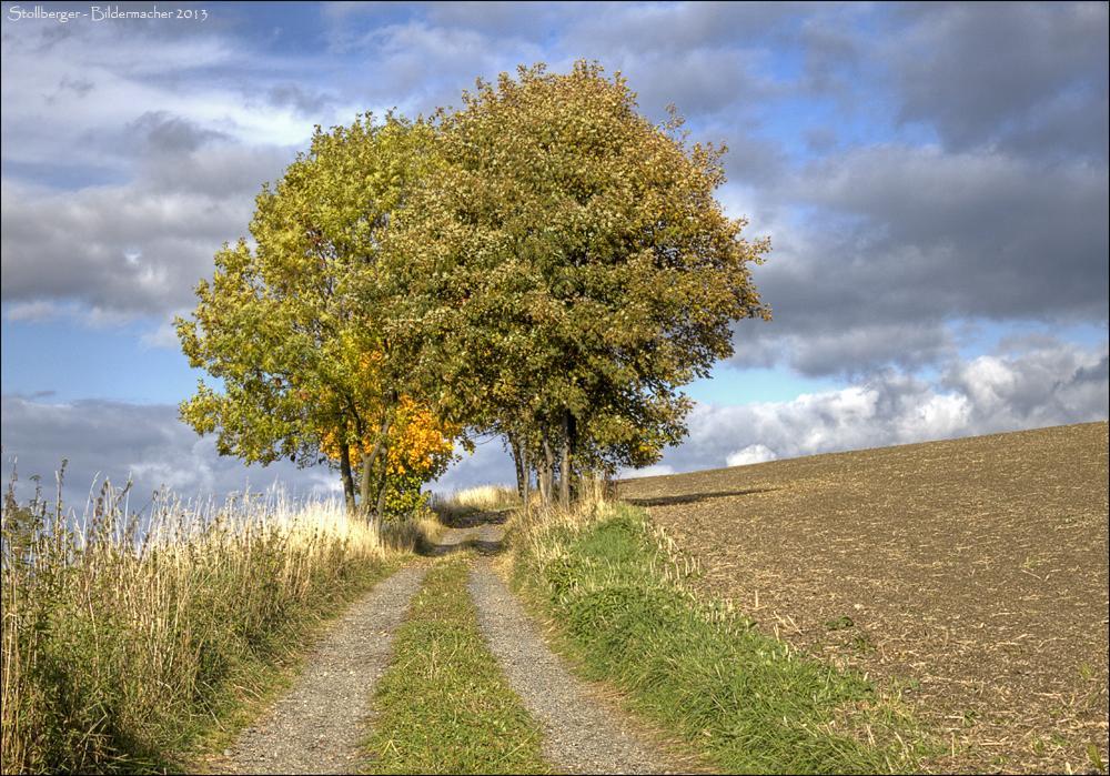 Stollberg im Herbst # 4