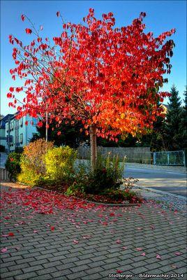 Stollberger Herbst