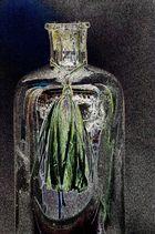 Stolz der Flaschen
