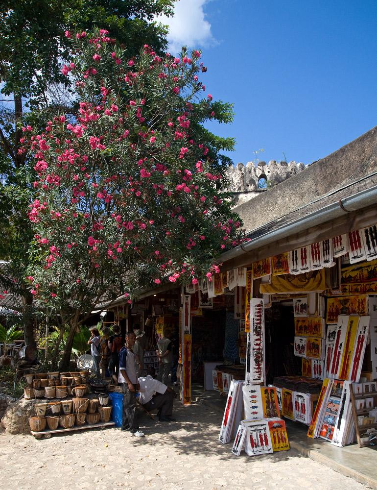 Stone Town Souvenir Shop
