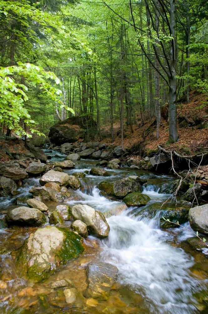 Stones and Water III