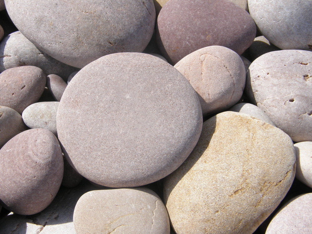 stony salterton