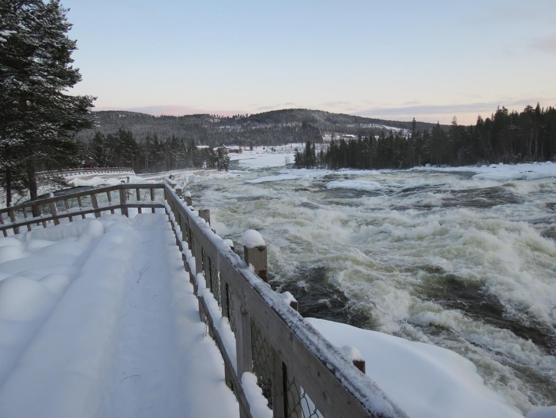 Storforsen Stromschnellen in Lappland
