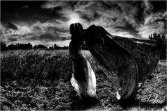 stracci, vento e fantasia....