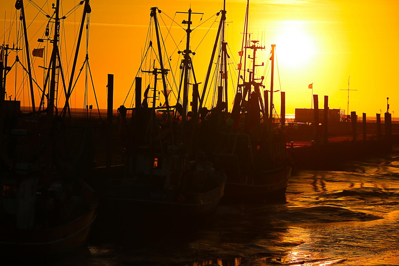 Strahlen des Sonnenuntergangs