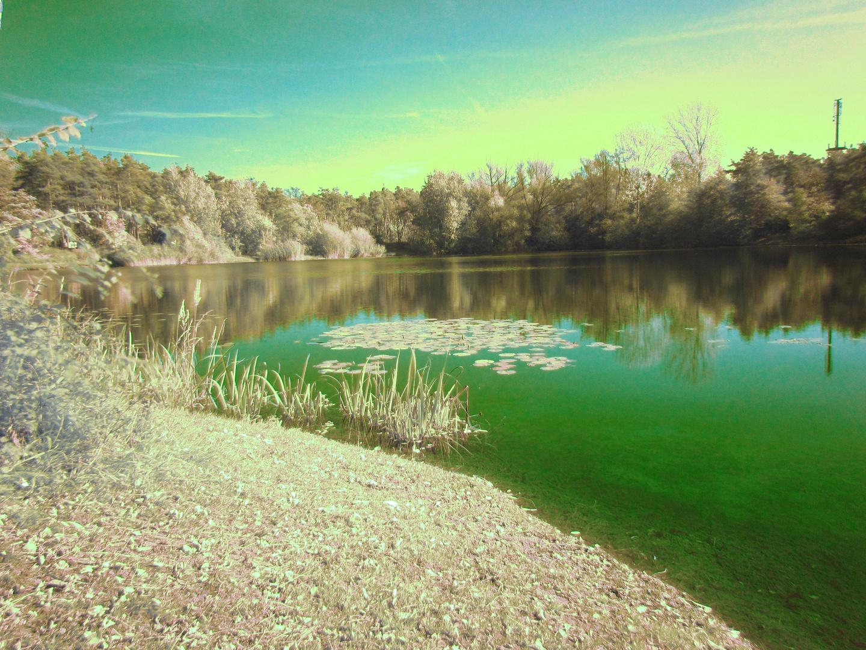 Strahlend grünes Wetter