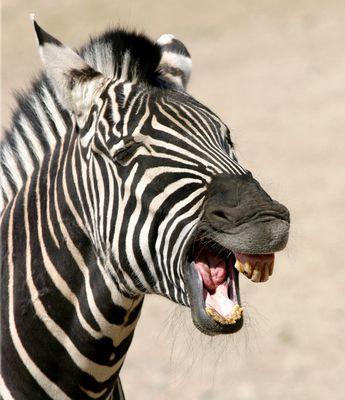 Strahlend weisse Zähne.......
