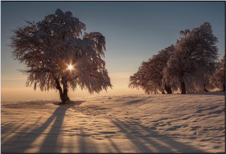 Strahlender Sonnentag....