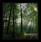 strahlendes Licht...