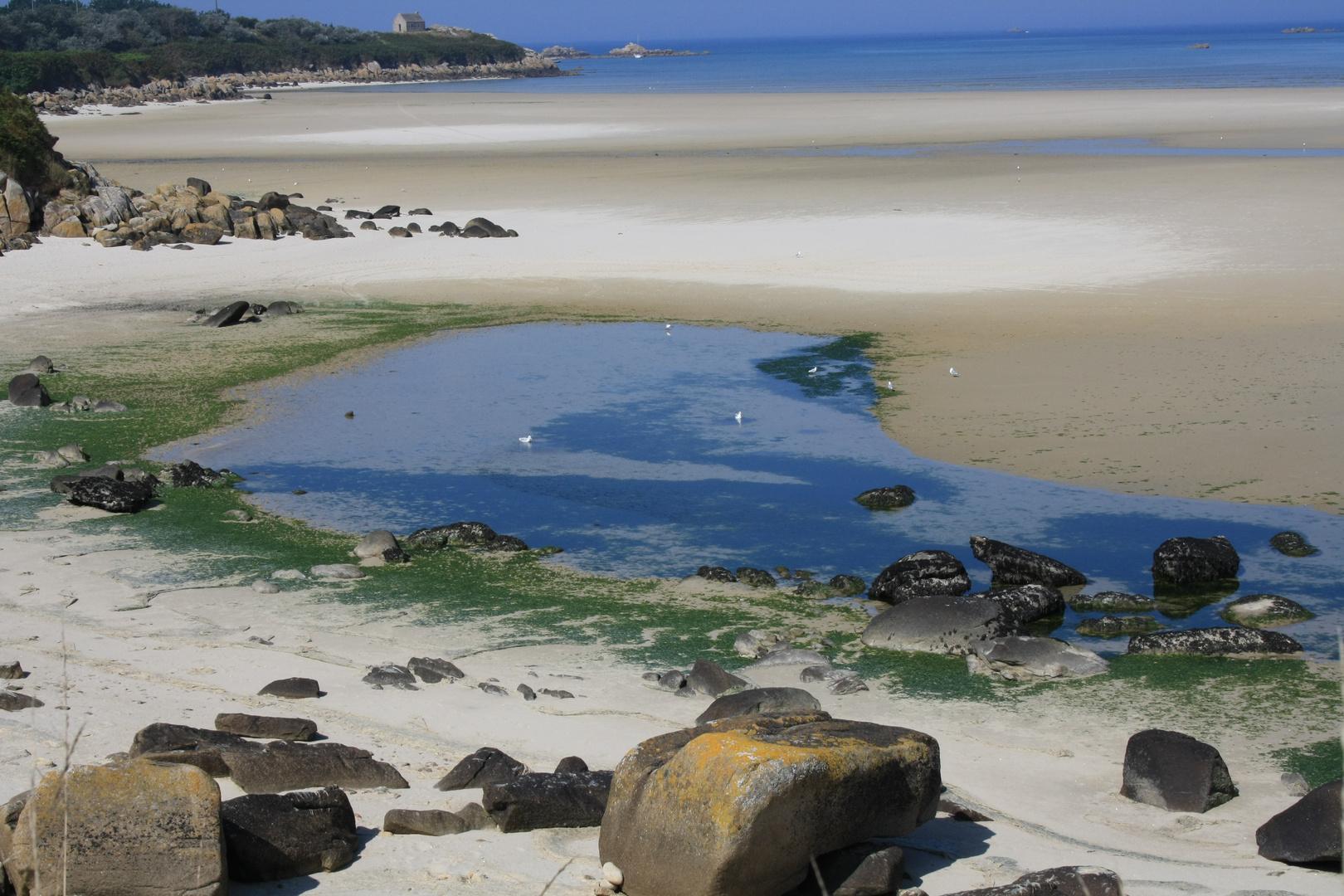 Strand bei Guisseny (Bretagne)