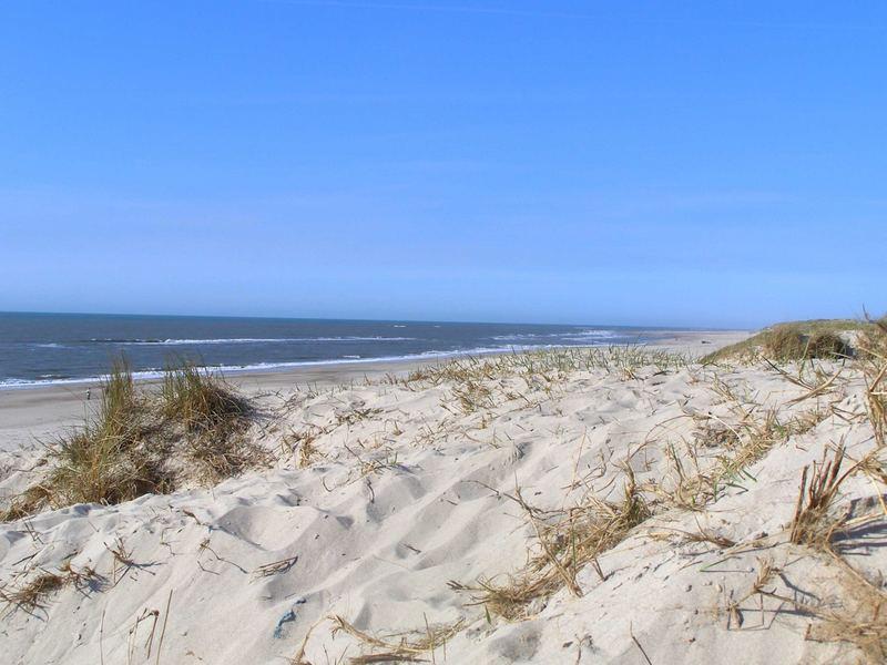 Strand bei Nymindegab
