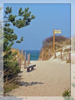 Strand bei Prerow