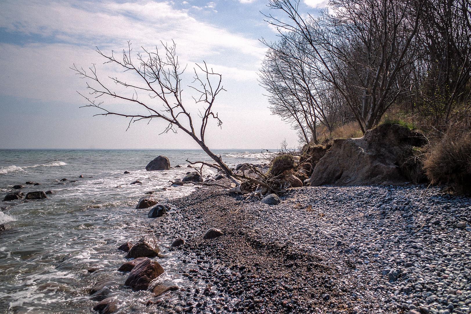 Strand bei Vitt / Rügen