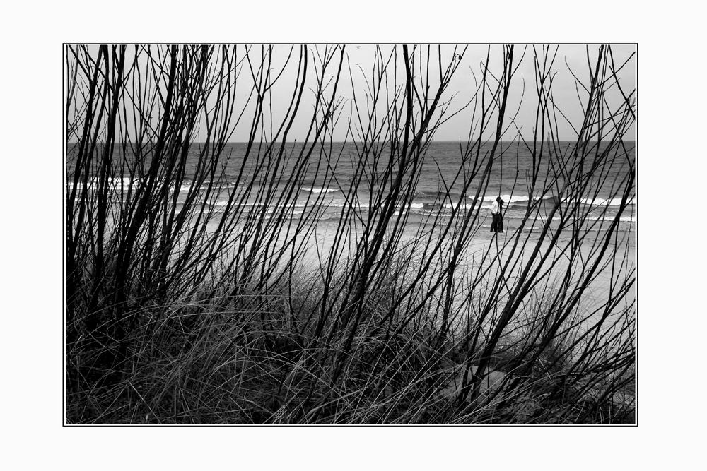Strand bei Zinnowitz (februar 08)