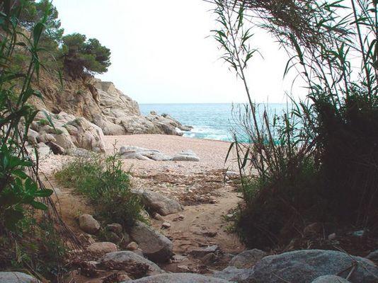 Strand ......erleben