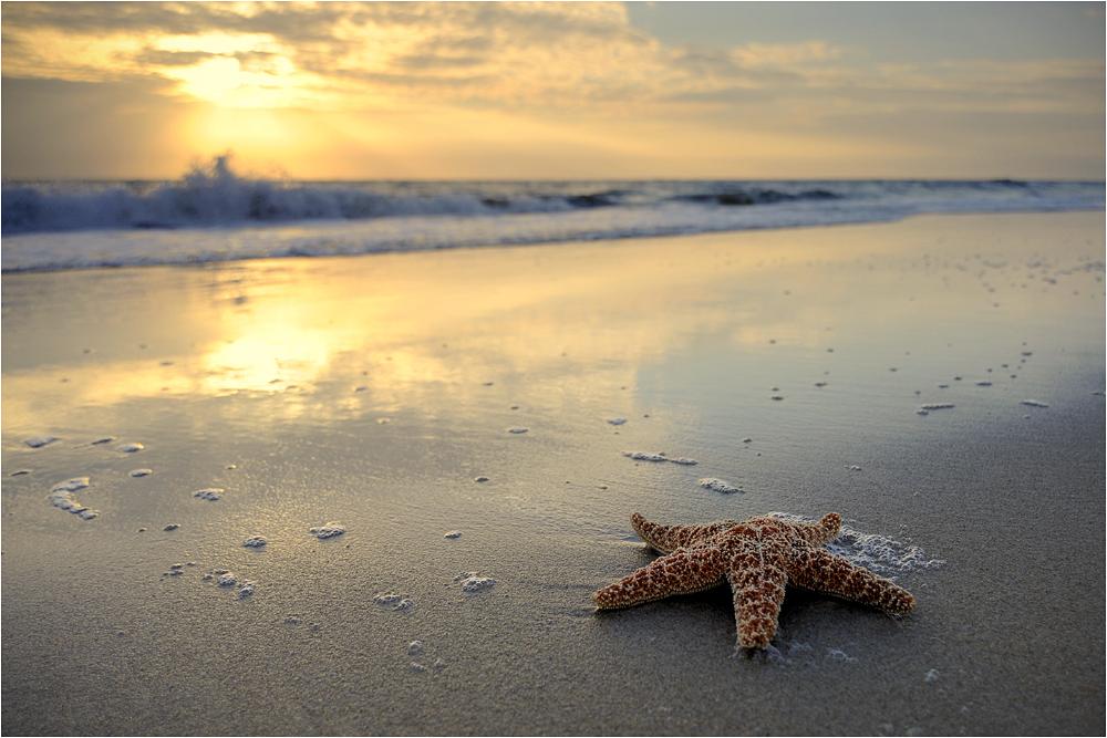Strand-Impressionen -36-