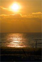 Strand-Impressionen (5)