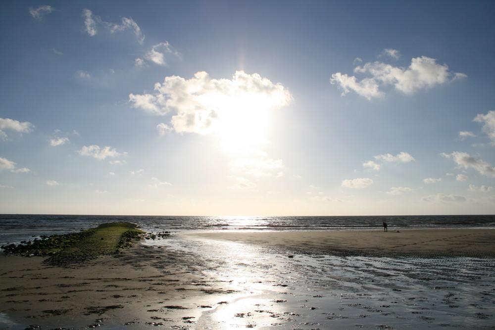 Strand in den Niederlanden Den Helder 10.06.08
