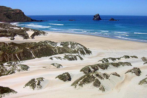 Strand in der Nähe von Dunedin