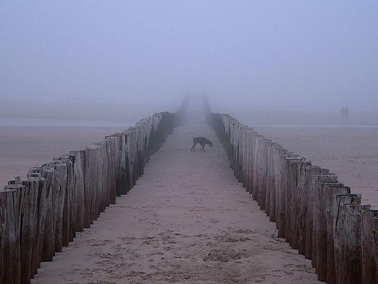 Strand in Domburg