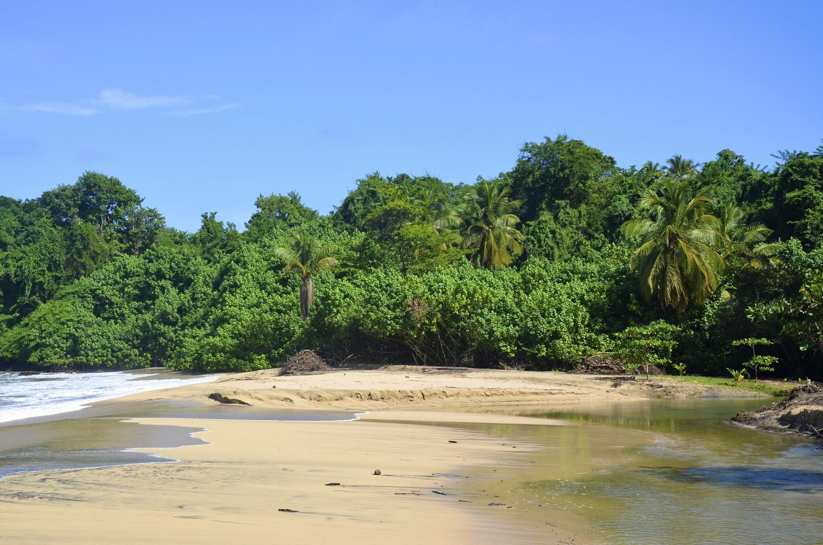Strand in Dominica (SAS/2011)