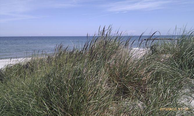 Strand in Kalifornien / Schönberg / Schleswig Holstein