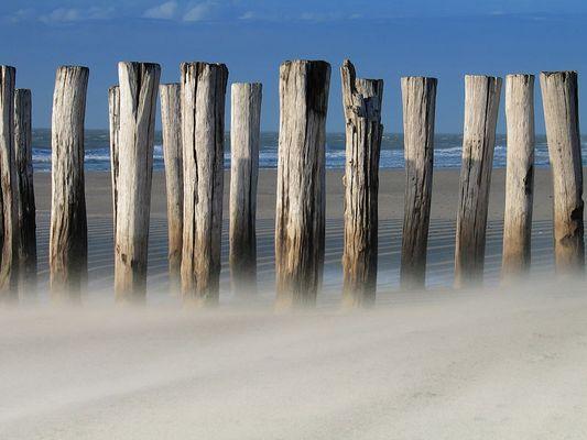 Strand in Zeeland