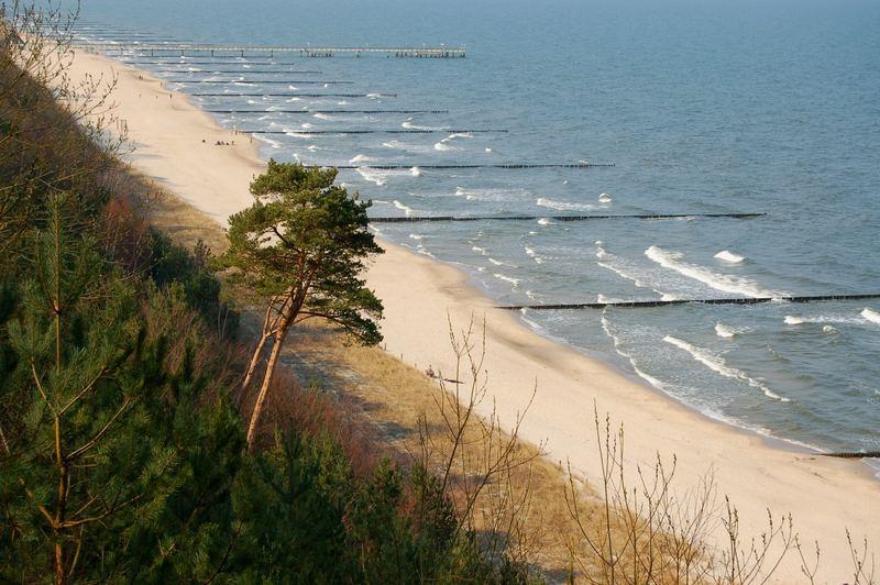 Strand mit Seebrücke in Koserow