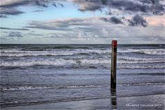 Strand Paal 28 op Texel ....