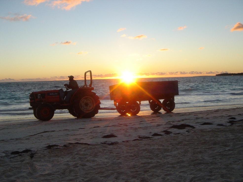 Strand Säuberung bei Sonnenaufgang