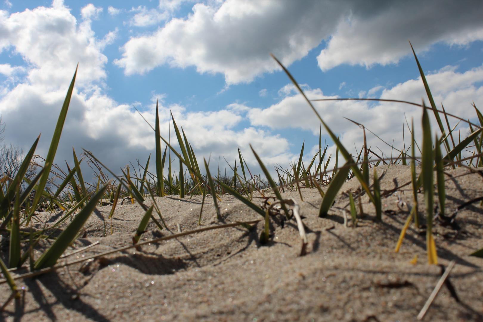 Strand, Sonne, Meer ...!
