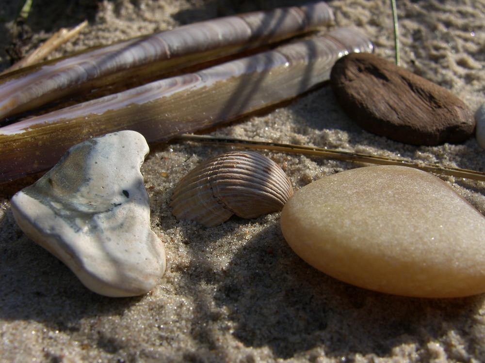 Strand-Stilleben #2