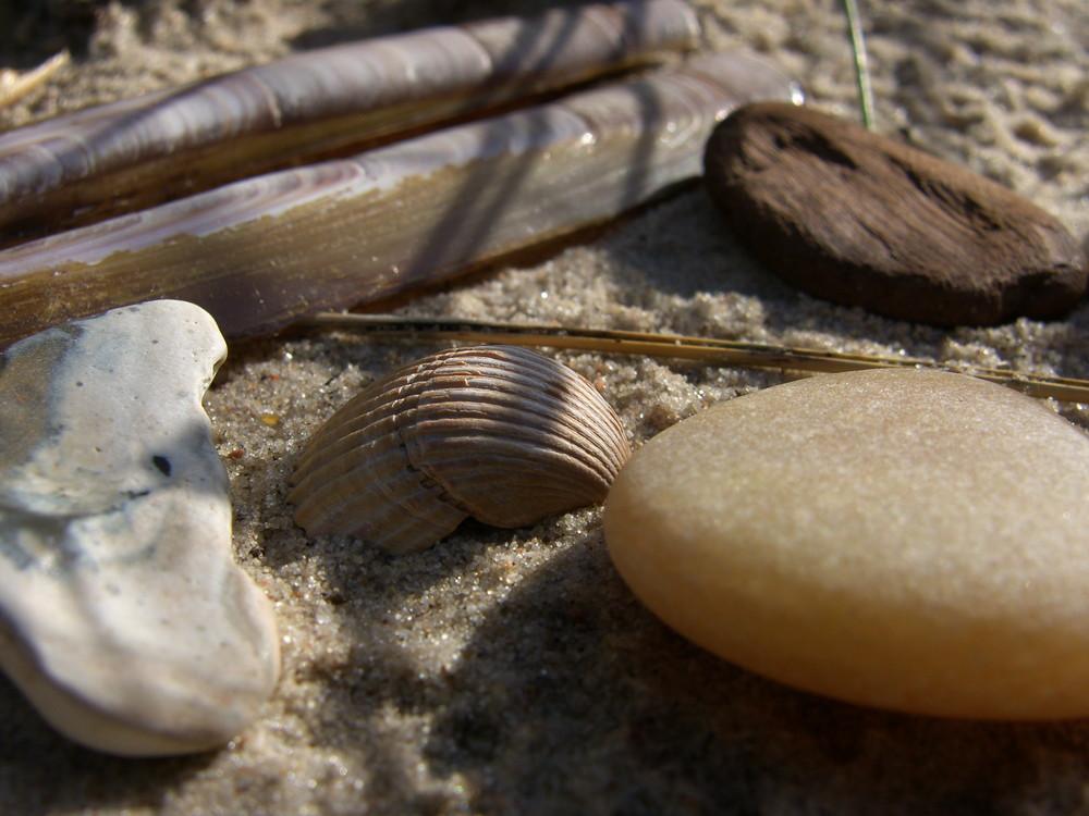 Strand-Stilleben #3