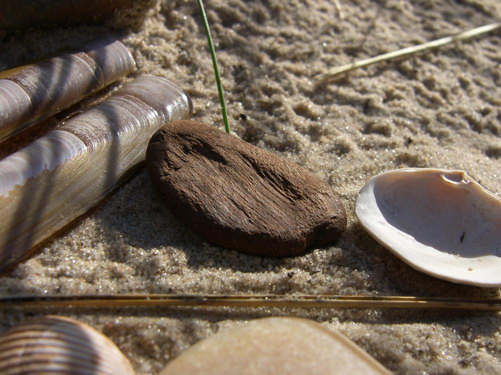 Strand-Stilleben #4