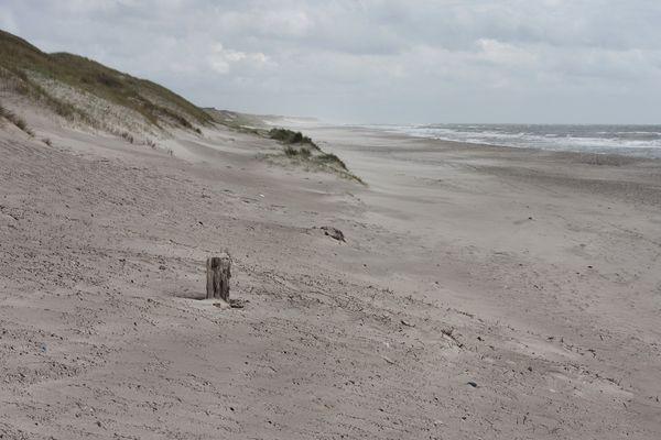 Strand südlich von Hvide Sande
