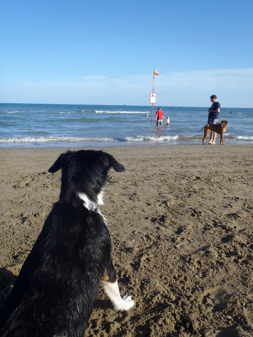 Strand Überwachung?