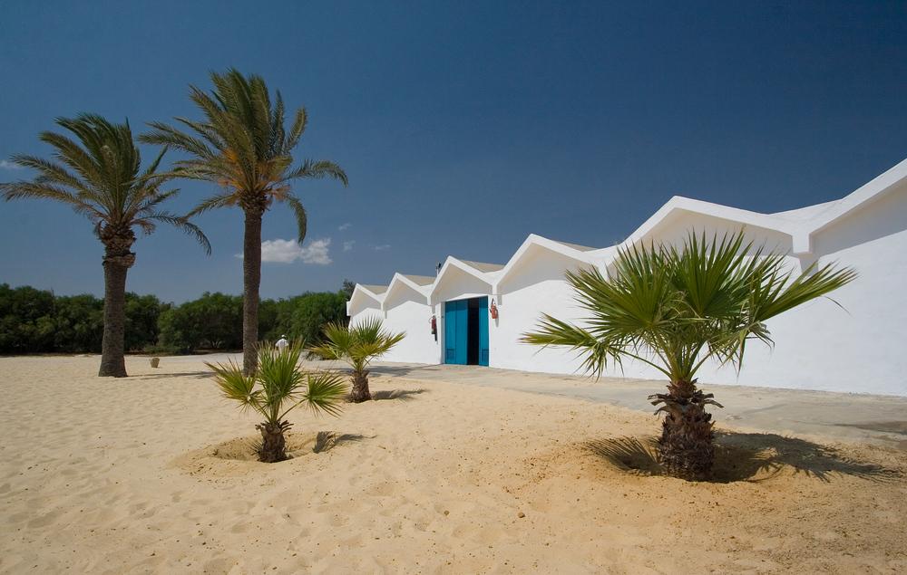 Strand und Palmen am Meer 1 (TUN)